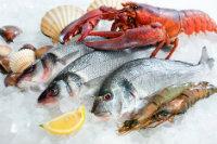 pescados-mariscos-salud-dental