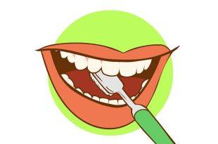 limpieza de la lengua burgos